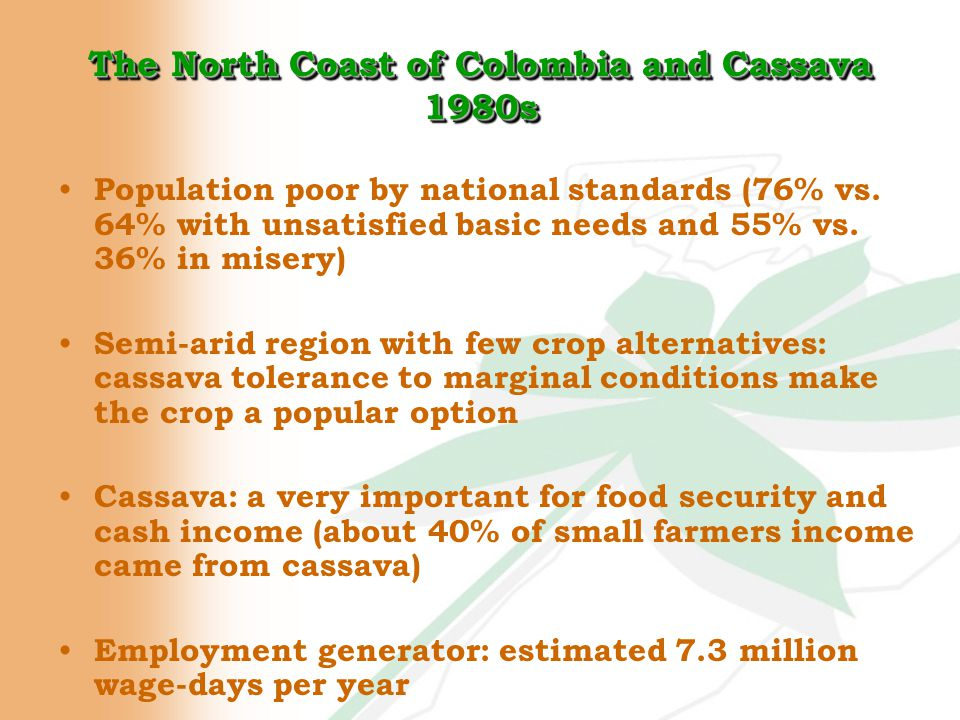 The Challenge High cassava production as a result of land reform and rural development program (credit, technical assistance, training) Stagnant demand for fresh cassava: depressed prices Massive credit default Failure of initial basic premise: more production = more incomes CIAT help requested to find a solution