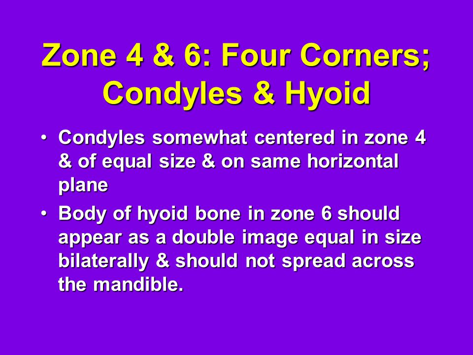 Zone 4 & 6: Four Corners; Condyles & Hyoid Condyles somewhat centered in zone 4 & of equal size & on same horizontal planeCondyles somewhat centered i