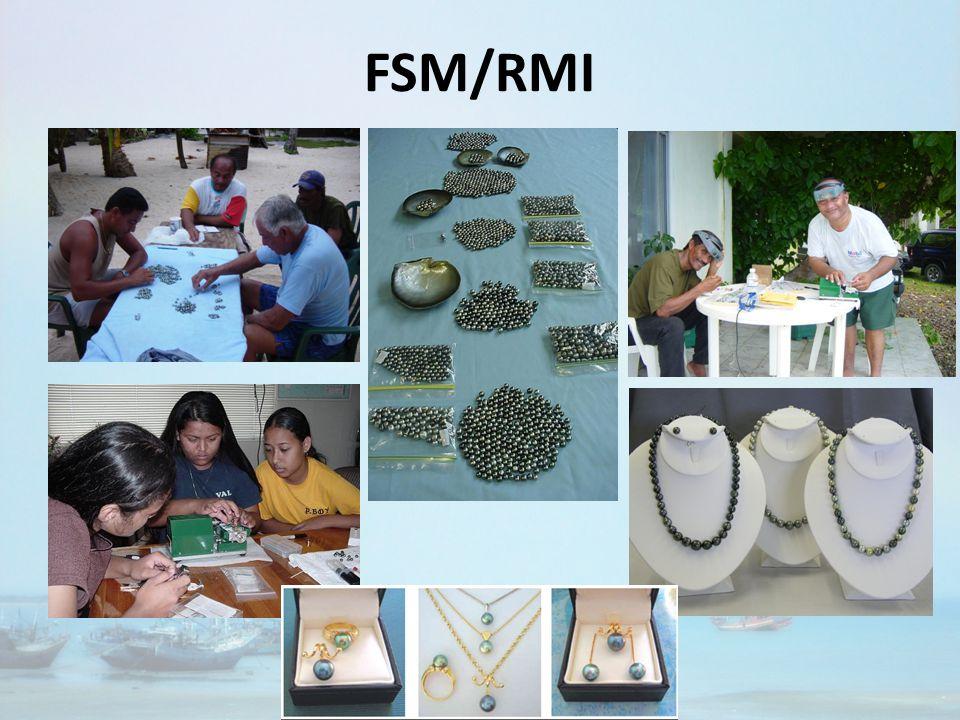FSM/RMI