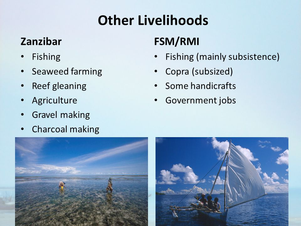 Other Livelihoods Zanzibar Fishing Seaweed farming Reef gleaning Agriculture Gravel making Charcoal making FSM/RMI Fishing (mainly subsistence) Copra (subsized) Some handicrafts Government jobs