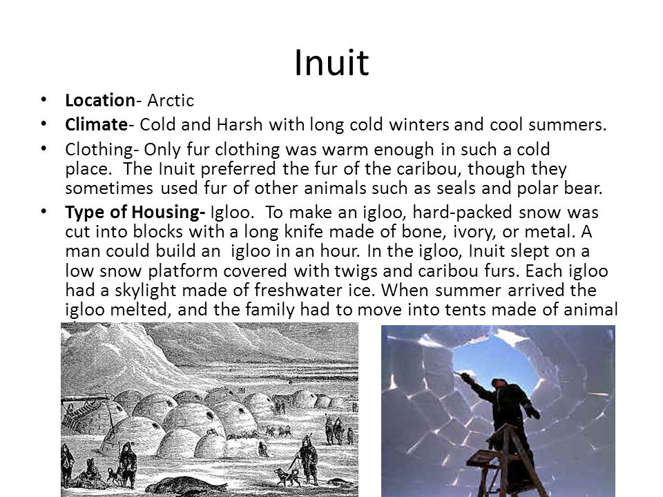 Inuit Location- Arctic Climate- Cold and Harsh with long cold winters and cool summers. Clothing- Only fur clothing was warm enough in such a cold pla