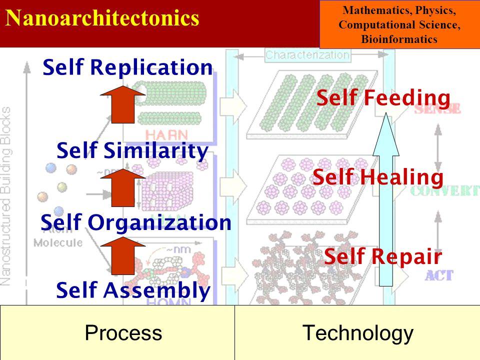 Nanoarchitectonics Mathematics, Physics, Computational Science, Bioinformatics Self Assembly Self Organization Self Similarity Self Replication Self R