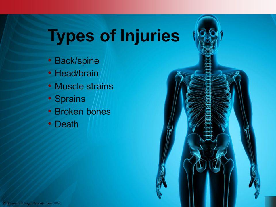 Back/spine Head/brain Muscle strains Sprains Broken bones Death © Business & Legal Reports, Inc.
