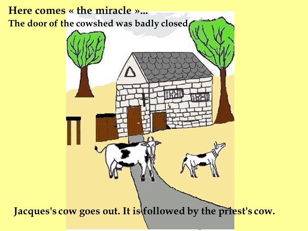 Here comes « the miracle »... The door of the cowshed was badly closed.