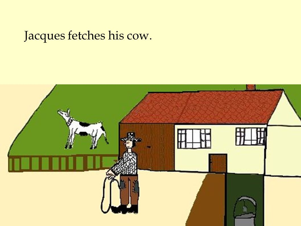 Jacques fetches his cow.