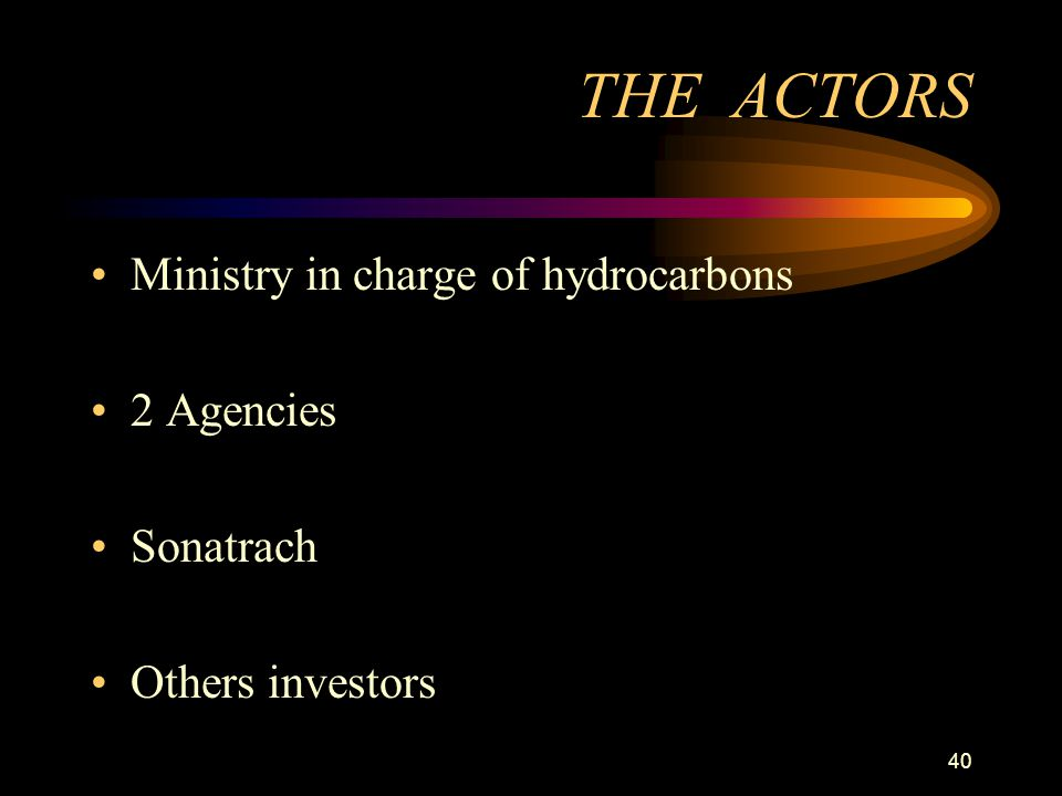 40 THE ACTORS Ministry in charge of hydrocarbons 2 Agencies Sonatrach Others investors