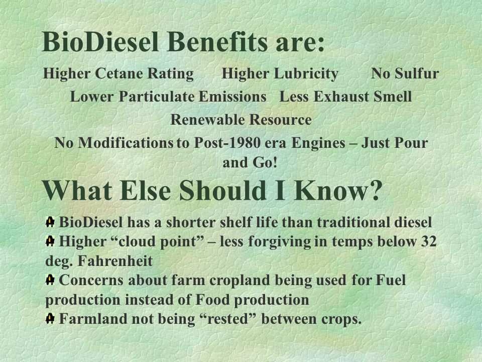 What is BioDiesel.