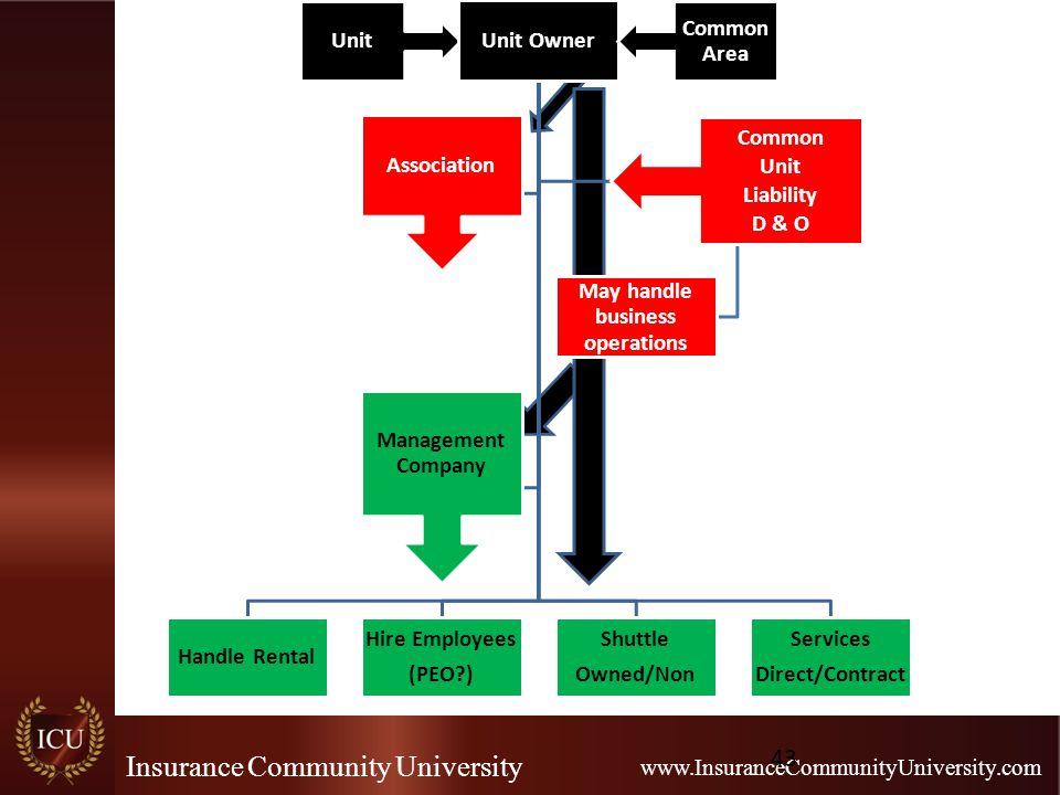 Insurance Community University www.InsuranceCommunityUniversity.com Unit Unit Owner Handle Rental Hire Employees (PEO ) Shuttle Owned/Non Services Direct/Contract Association Common Unit Liability D & O May handle business operations Management Company Common Area 43