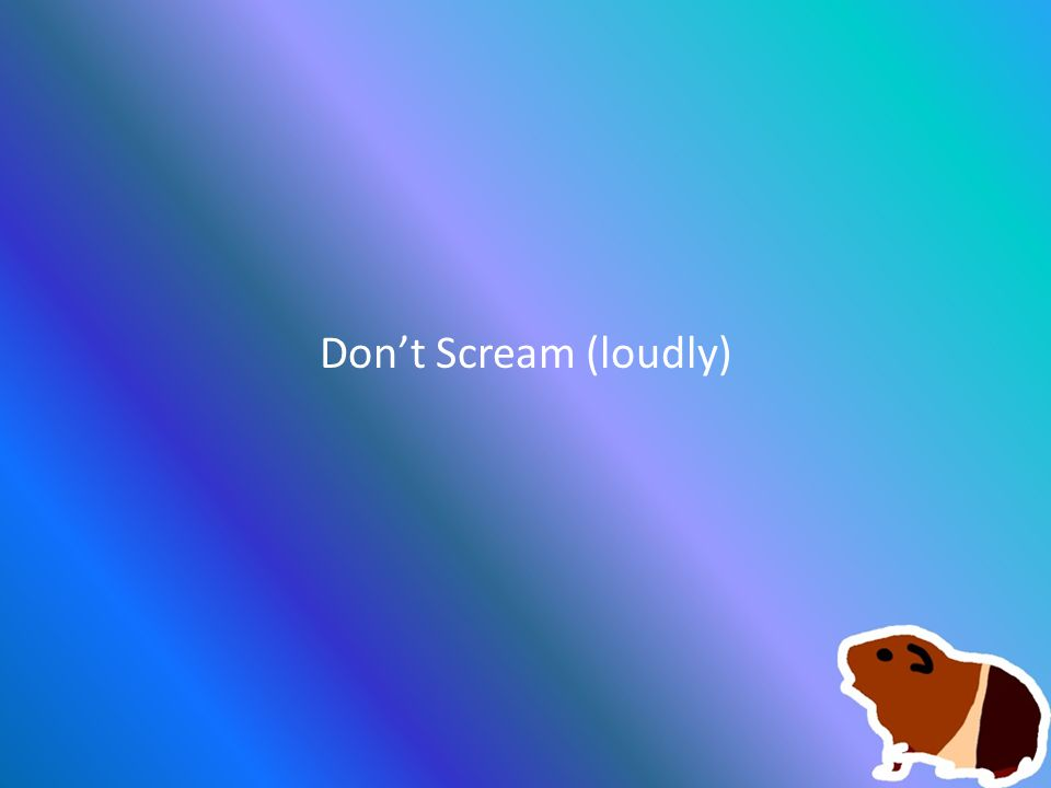Don't Scream (loudly)