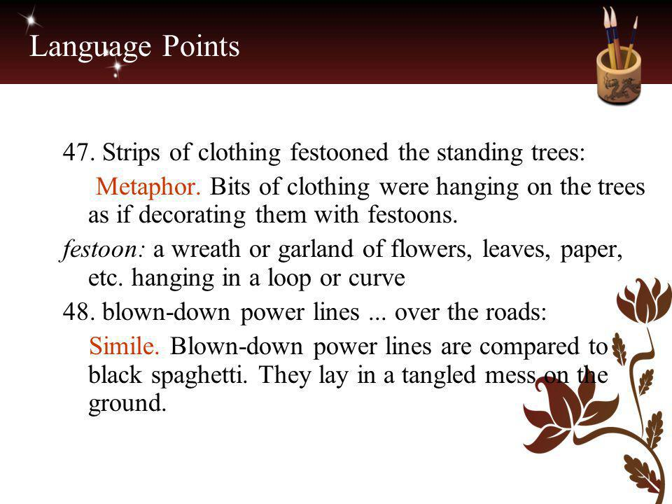Language Points 47. Strips of clothing festooned the standing trees: Metaphor. Bits of clothing were hanging on the trees as if decorating them with f