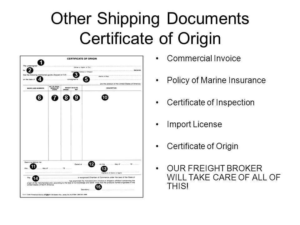 Other Shipping Documents Certificate of Origin Commercial Invoice Policy of Marine Insurance Certificate of Inspection Import License Certificate of Origin OUR FREIGHT BROKER WILL TAKE CARE OF ALL OF THIS!