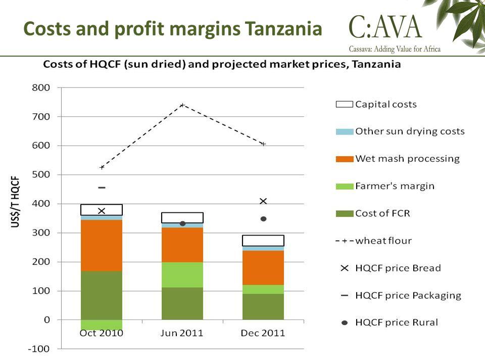 Costs and profit margins Tanzania