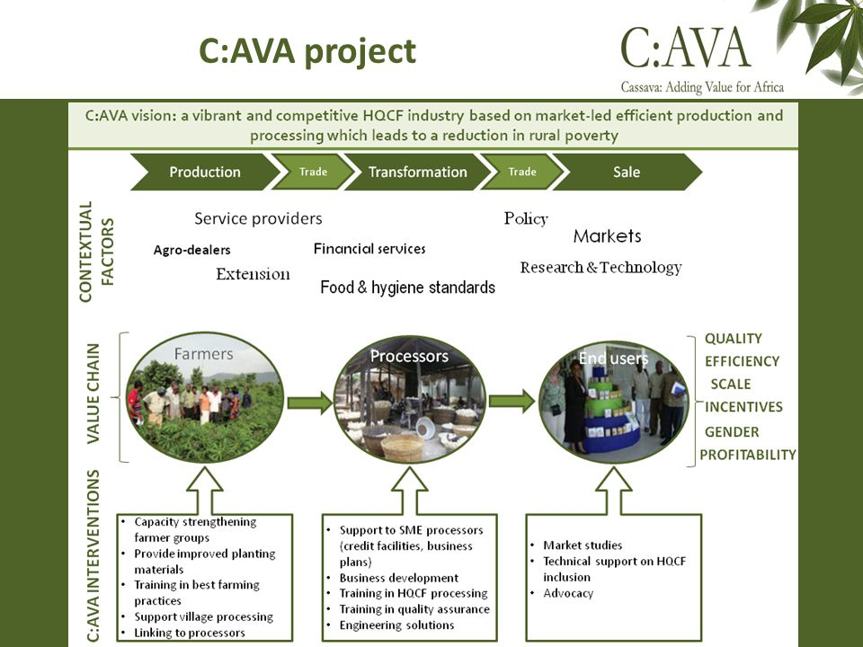 HQCF value chain Fresh cassava roots Cultivating & harvesting Peeling & washing Grating & pressing End use Milling & sieving & packing HQCF Value chain Drying Cassava fresh roots Cassava wet mash / cake Cassava dried grits High Quality Cassava Flour