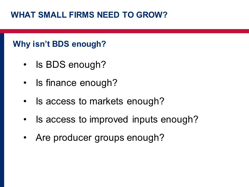 WHAT SMALL FIRMS NEED TO GROW. Why isn't BDS enough.
