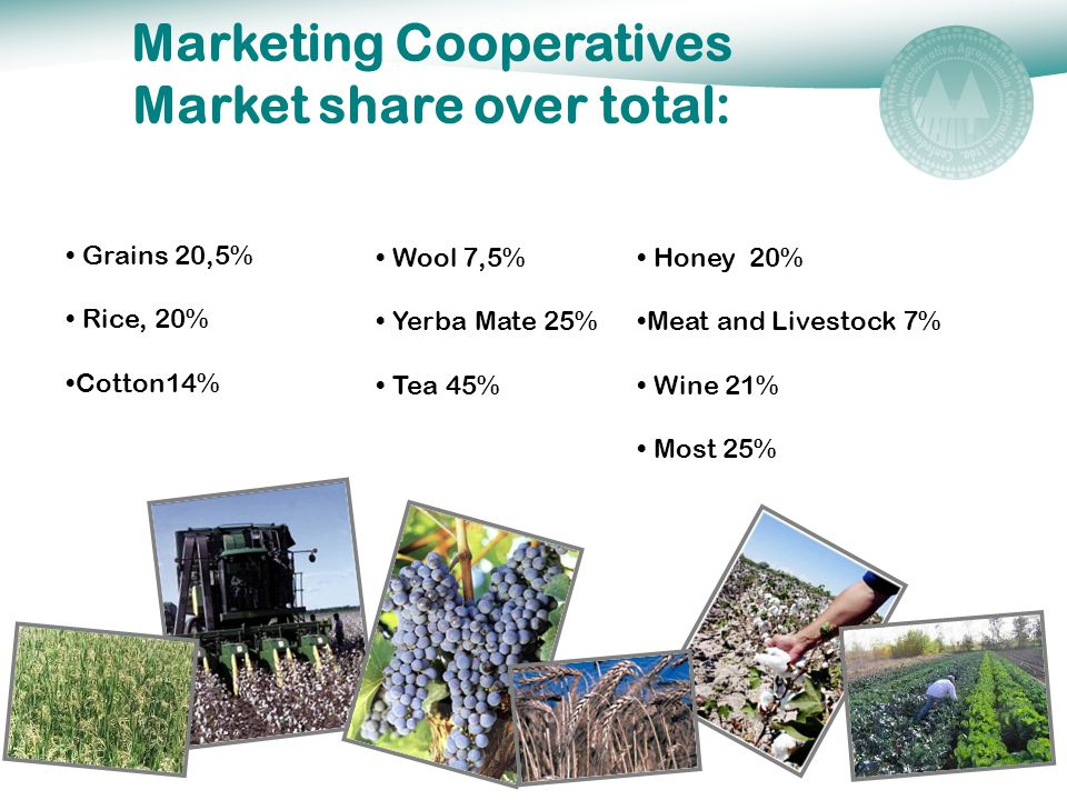 Marketing Cooperatives Market share over total: Honey 20% Meat and Livestock 7% Wine 21% Most 25% Grains 20,5% Rice, 20% Cotton14% Wool 7,5% Yerba Mate 25% Tea 45%