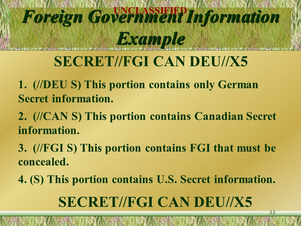 """UNCLASSIFIED 32 Foreign Government Information List country codes in alphabetical order, separated by single space Substitute """"FGI"""" where specific gov"""
