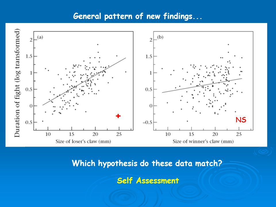 Which hypothesis do these data match General pattern of new findings... Self Assessment + NS