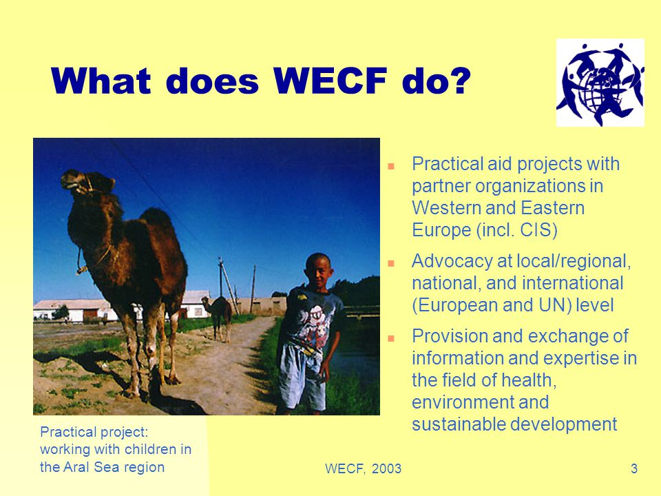WECF, 20034 How are we organised WECF was founded after Rio 1992 Earth Summit WECF has 2 offices, in Netherlands and Germany WECF has 50 members in 20 countries in East and West WECF works in close cooperation on practical projects with many of its members, health, human rights and women's organisations These projects are in field of Women's health and environment, women and healthy food production, safe and sufficient drinking water, fight radiation and chemical pollution