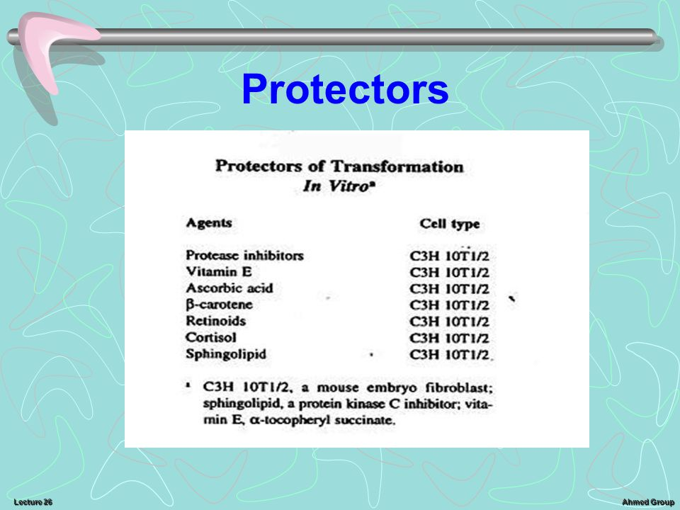 Ahmed Group Lecture 26 Protectors