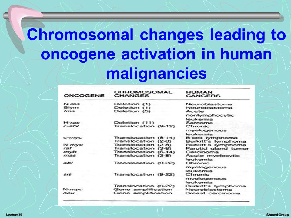 Ahmed Group Lecture 26 Chromosomal changes leading to oncogene activation in human malignancies