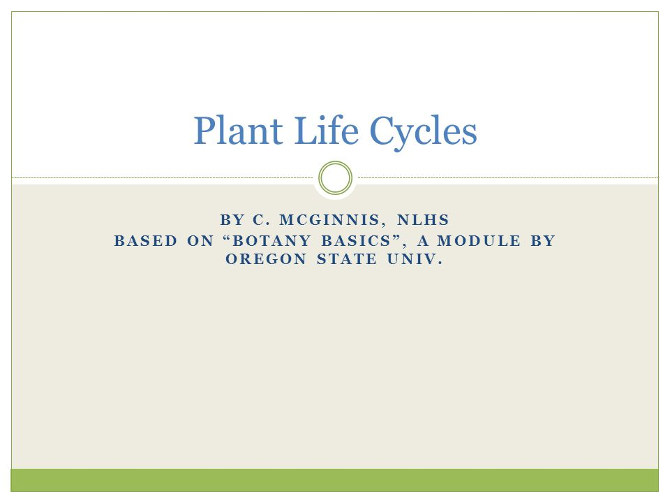 """BY C. MCGINNIS, NLHS BASED ON """"BOTANY BASICS"""", A MODULE BY OREGON STATE UNIV. Plant Life Cycles"""