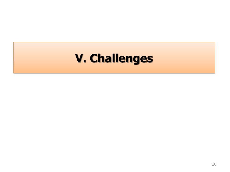 28 V. Challenges