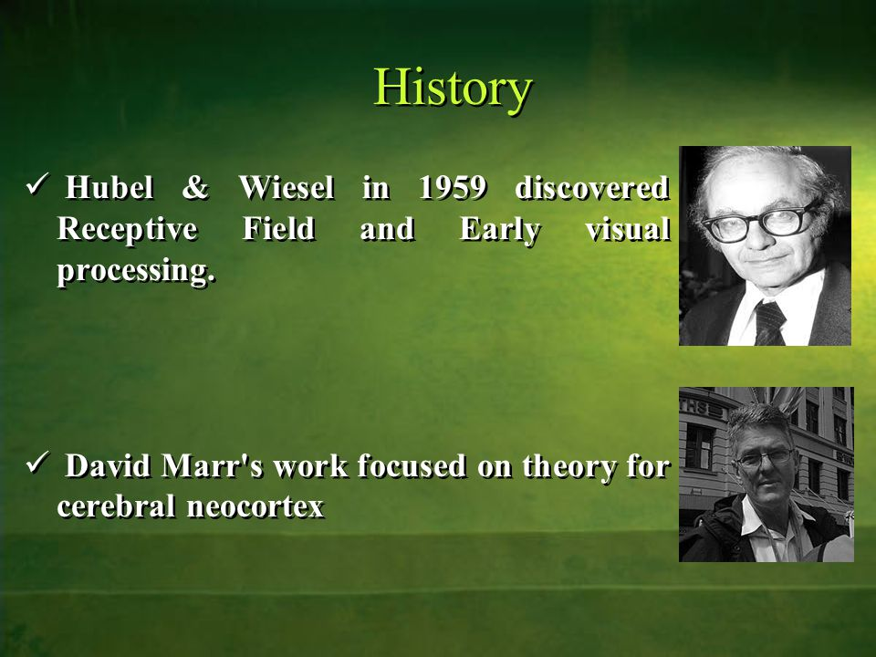 History Hubel & Wiesel in 1959 discovered Receptive Field and Early visual processing.