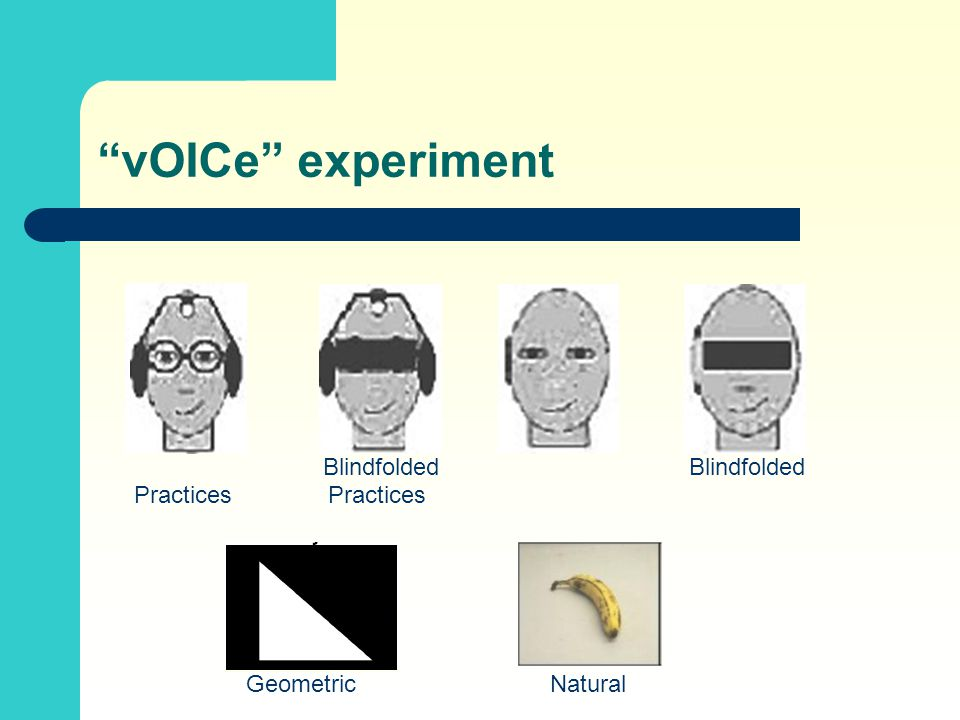 """vOICe"" experiment Blindfolded Practices Geometric Natural"