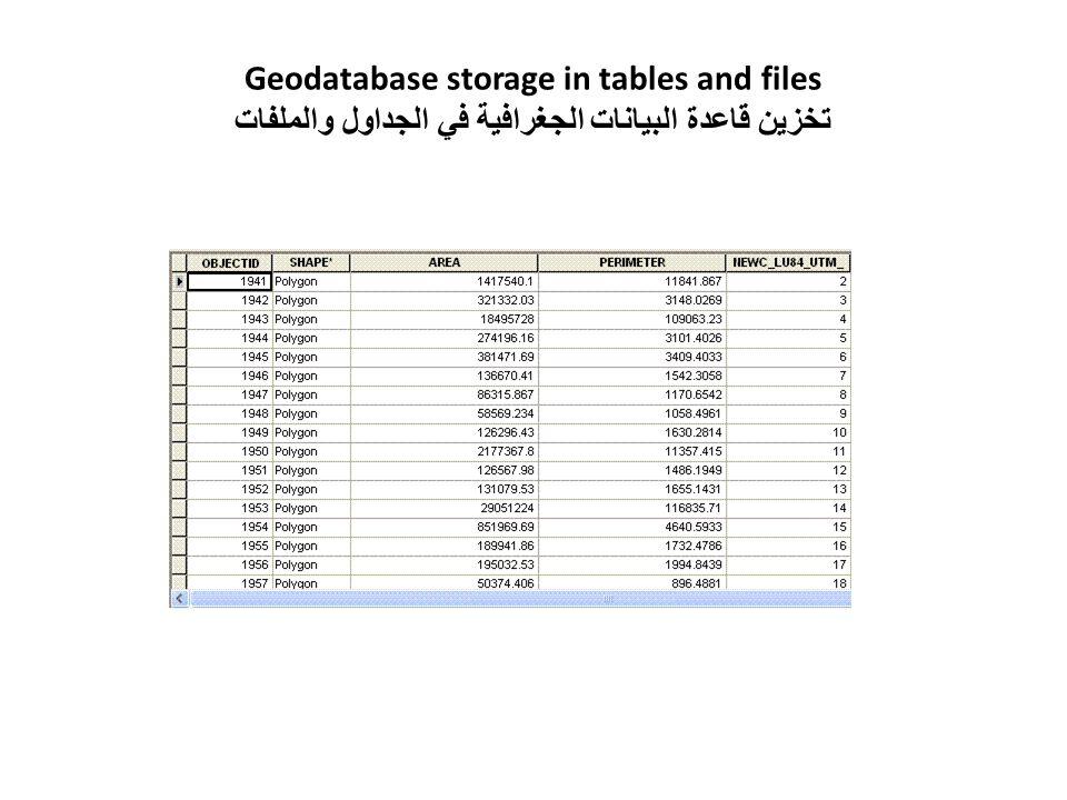 Geodatabase storage in tables and files تخزين قاعدة البيانات الجغرافية في الجداول والملفات