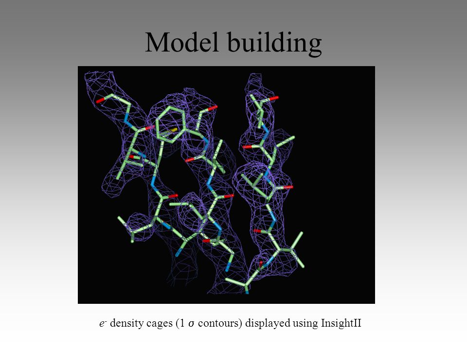 Model building e - density cages (1  contours) displayed using InsightII
