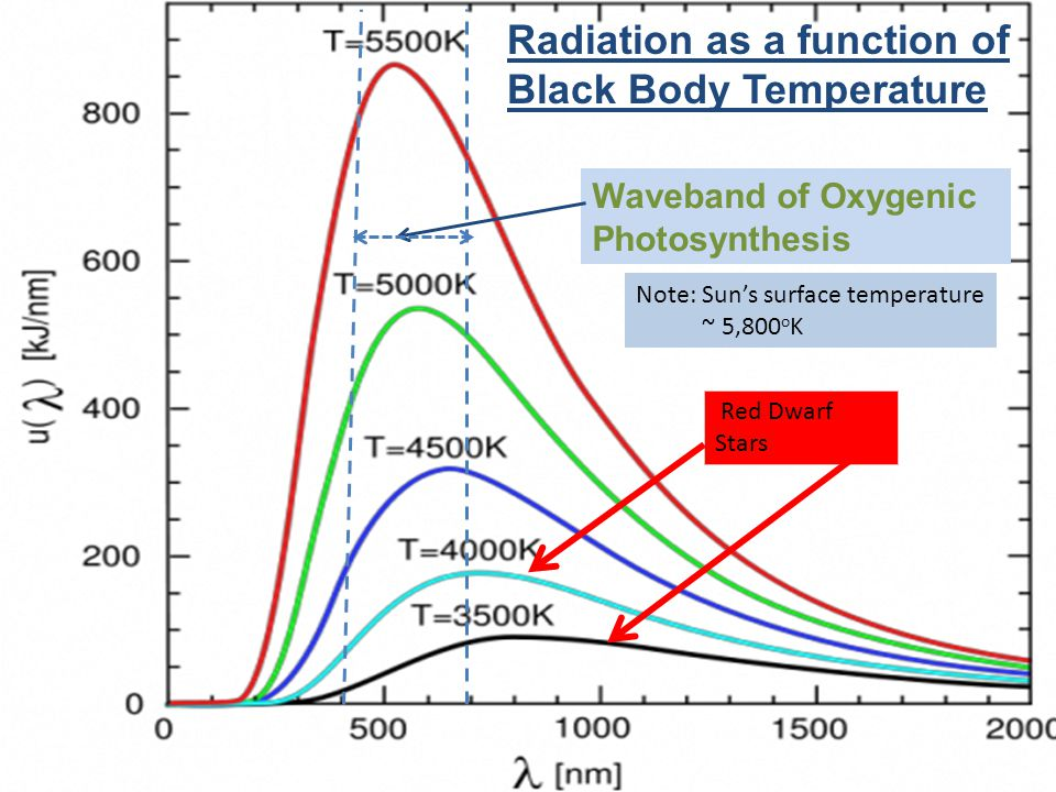 Radiation as a function of Black Body Temperature Waveband of Oxygenic Photosynthesis Note: Sun's surface temperature ~ 5,800 o K Red Dwarf Stars