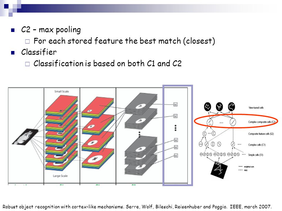 C2 – max pooling  For each stored feature the best match (closest) Classifier  Classification is based on both C1 and C2 Robust object recognition w