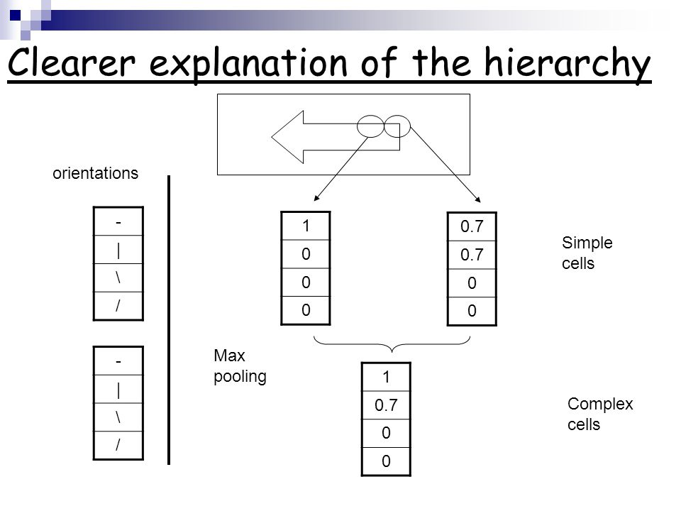 The hierarchy based on the brain model: Hierarchical models of object recognition in cortex.