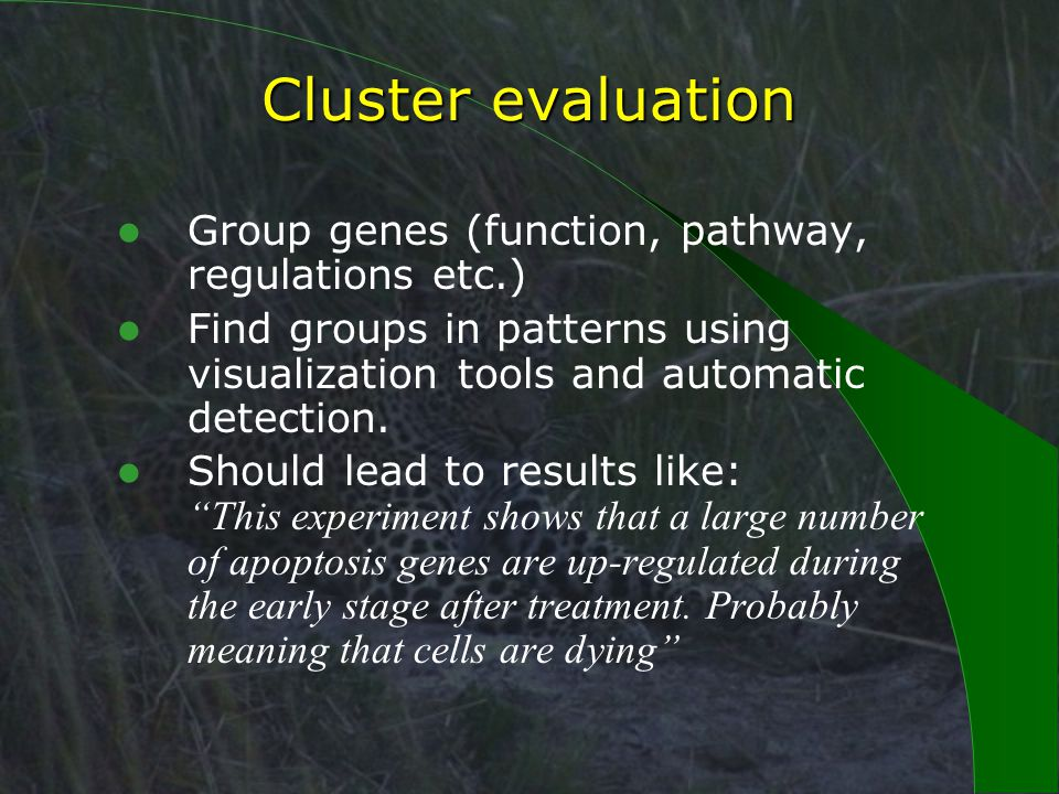 Cluster evaluation Group genes (function, pathway, regulations etc.) Find groups in patterns using visualization tools and automatic detection.