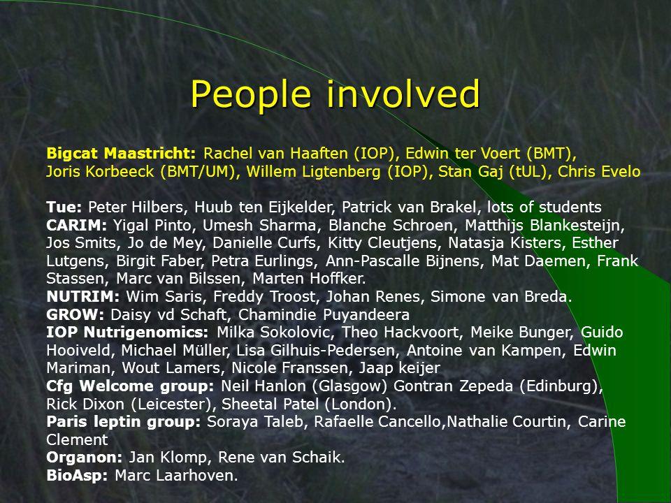 People involved Bigcat Maastricht: Rachel van Haaften (IOP), Edwin ter Voert (BMT), Joris Korbeeck (BMT/UM), Willem Ligtenberg (IOP), Stan Gaj (tUL), Chris Evelo Tue: Peter Hilbers, Huub ten Eijkelder, Patrick van Brakel, lots of students CARIM: Yigal Pinto, Umesh Sharma, Blanche Schroen, Matthijs Blankesteijn, Jos Smits, Jo de Mey, Danielle Curfs, Kitty Cleutjens, Natasja Kisters, Esther Lutgens, Birgit Faber, Petra Eurlings, Ann-Pascalle Bijnens, Mat Daemen, Frank Stassen, Marc van Bilssen, Marten Hoffker.