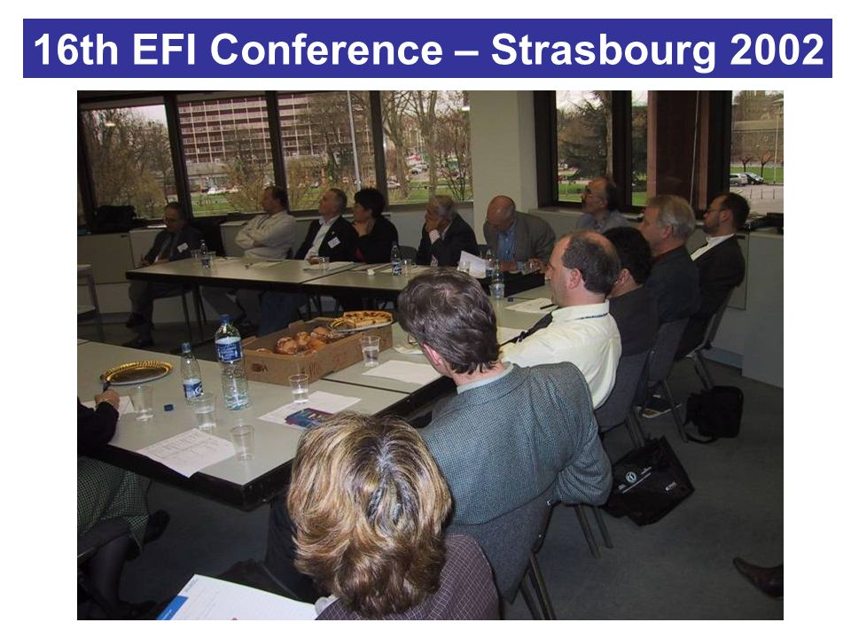 16th EFI Conference – Strasbourg 2002