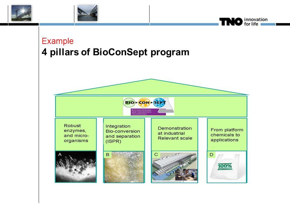 Example 4 pillars of BioConSept program