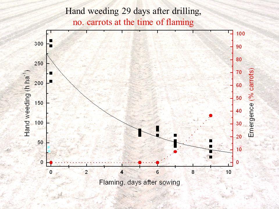 Område Jordbruk - odlingssystem, teknik och produktkvalitet www.slu.se David Hansson 2007-11-29 Hand weeding 29 days after drilling, no.