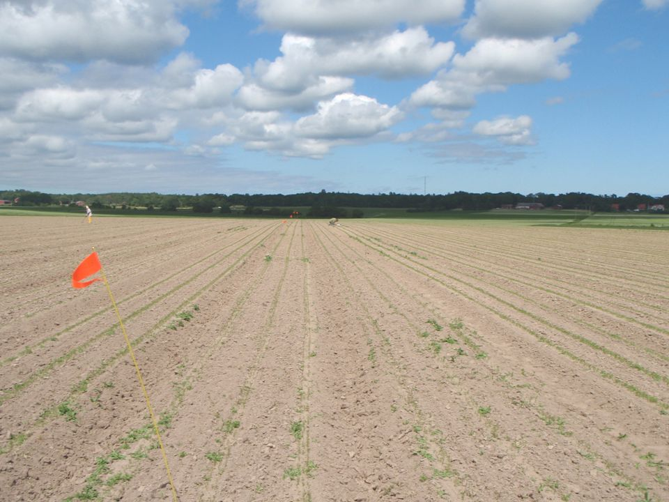 Område Jordbruk - odlingssystem, teknik och produktkvalitet www.slu.se