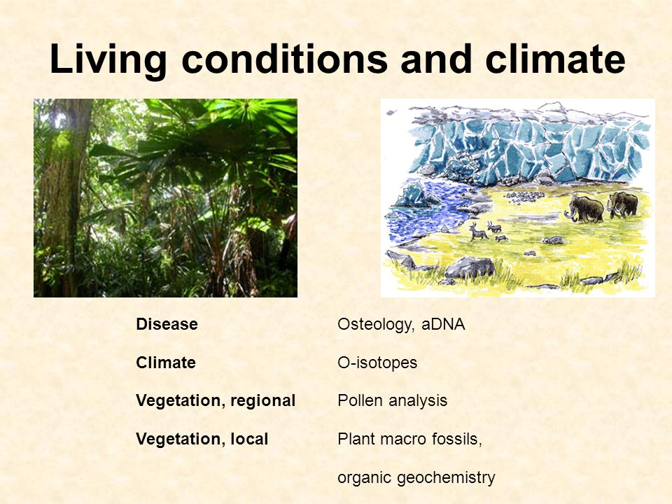 Living conditions and climate DiseaseOsteology, aDNA ClimateO-isotopes Vegetation, regionalPollen analysis Vegetation, localPlant macro fossils, organic geochemistry