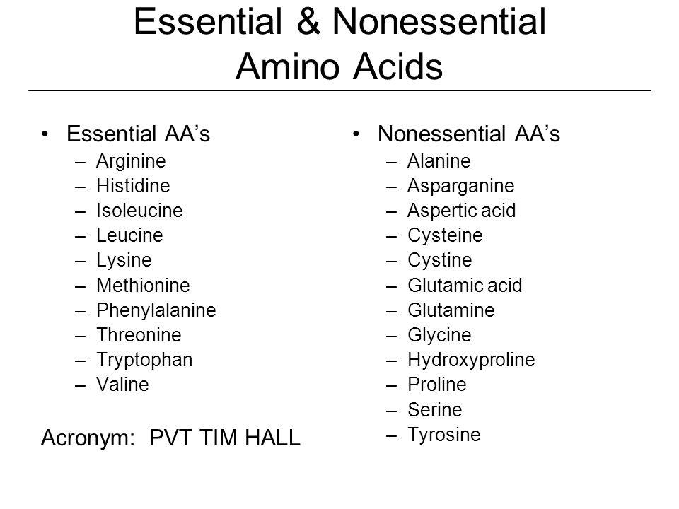 Essential & Nonessential Amino Acids Essential AA's –Arginine –Histidine –Isoleucine –Leucine –Lysine –Methionine –Phenylalanine –Threonine –Tryptopha