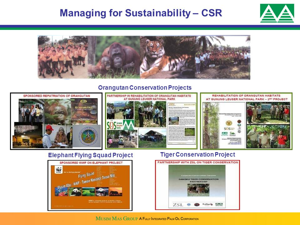 Orangutan Conservation Projects Elephant Flying Squad Project Tiger Conservation Project Managing for Sustainability – CSR