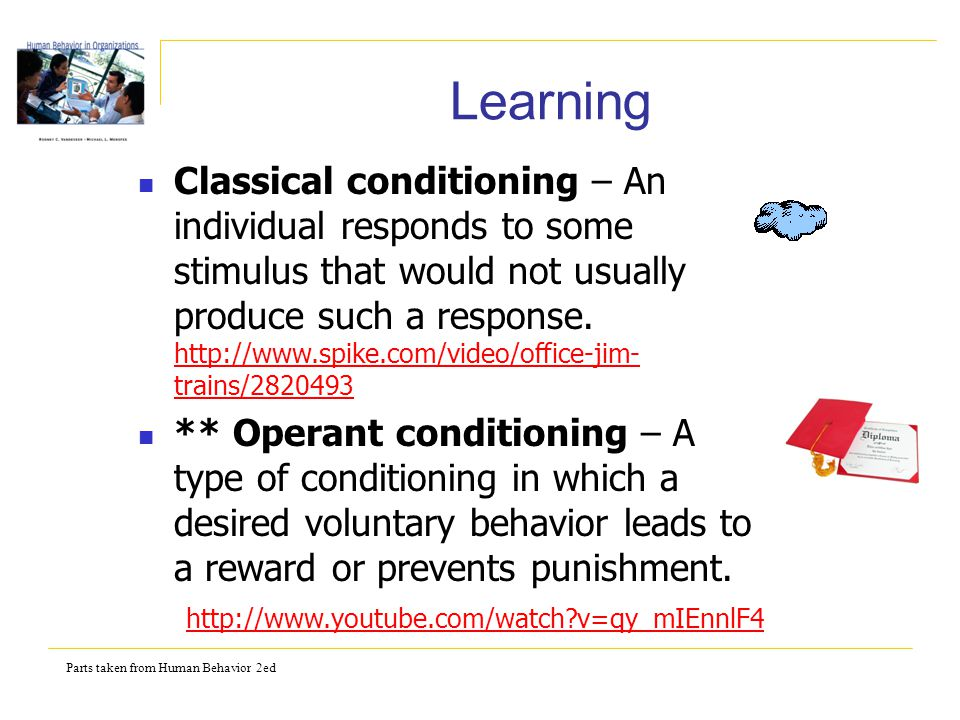 Parts taken from Human Behavior 2ed Learning Classical conditioning – An individual responds to some stimulus that would not usually produce such a response.