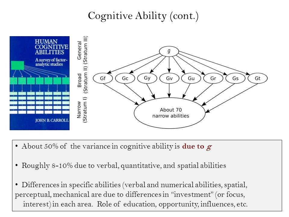 About 50% of the variance in cognitive ability is due to g Roughly 8-10% due to verbal, quantitative, and spatial abilities Differences in specific abilities (verbal and numerical abilities, spatial, perceptual, mechanical are due to differences in investment (or focus, interest) in each area.