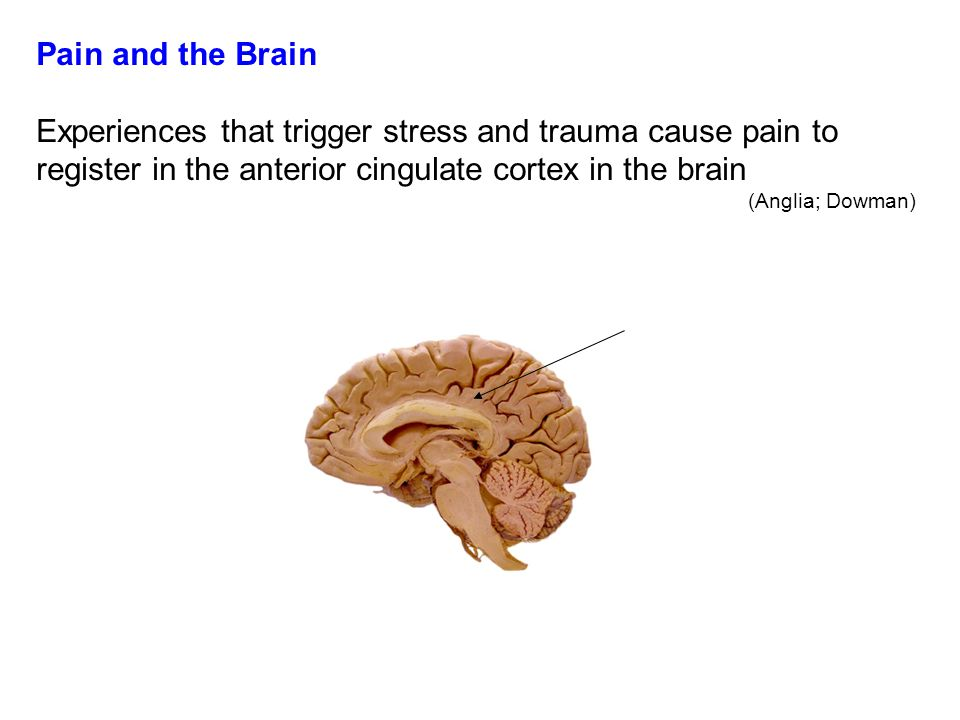 Fighting Pain With Pain Most traditional approaches to discipline centre around the use of punishment.
