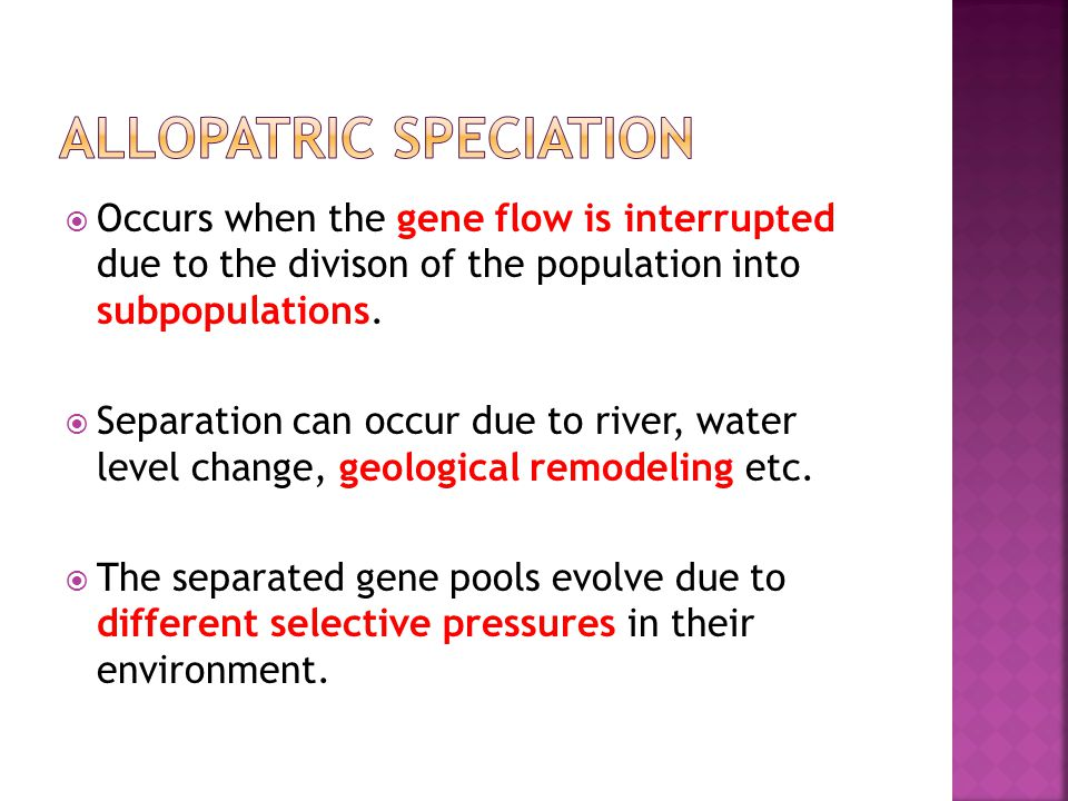  Occurs when the gene flow is interrupted due to the divison of the population into subpopulations.  Separation can occur due to river, water level
