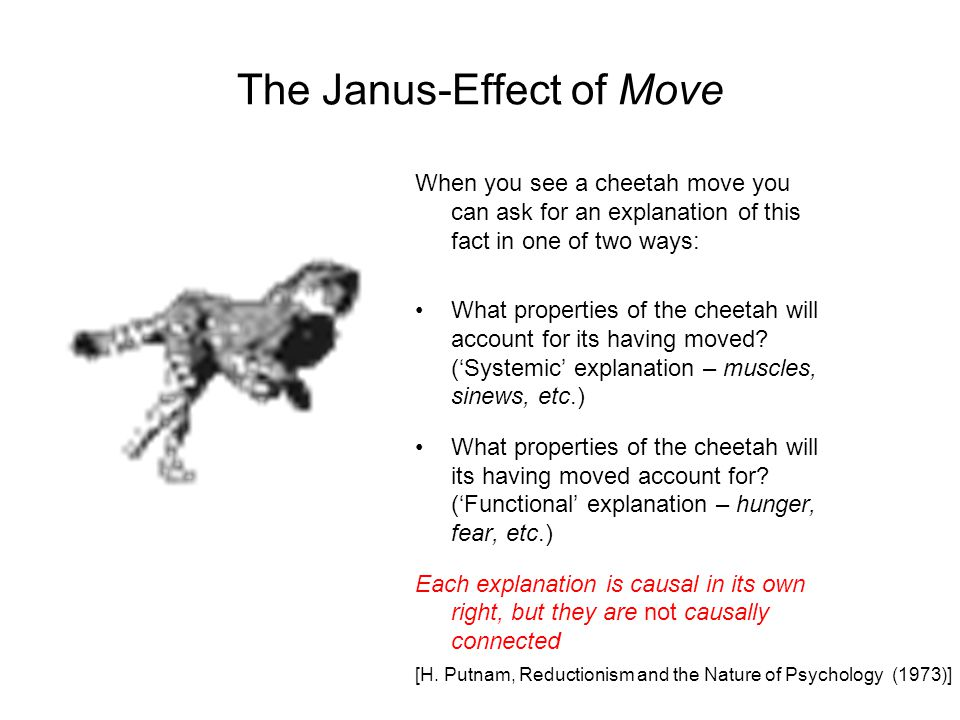 The Janus-Effect of Move When you see a cheetah move you can ask for an explanation of this fact in one of two ways: What properties of the cheetah will account for its having moved.