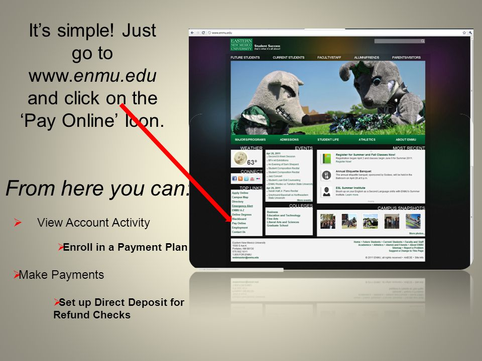 Use your Student ID Number and ENMU Password to Log In