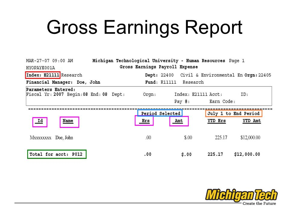 Gross Earnings Report 