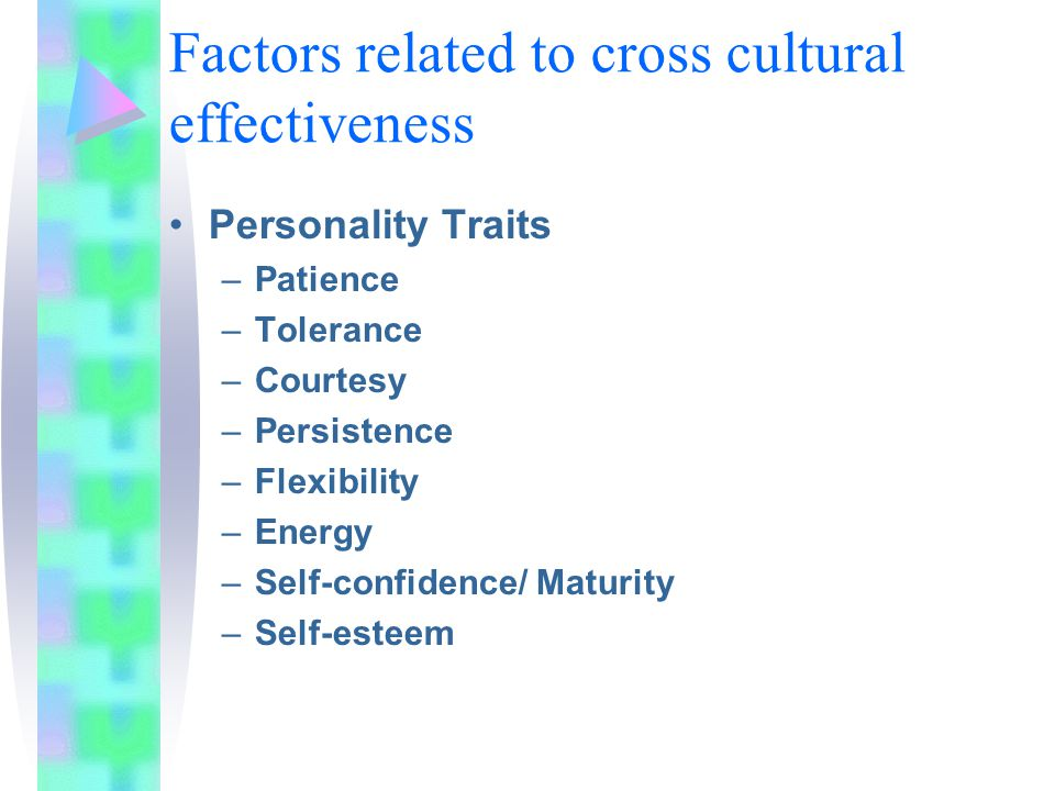 Factors related to cross cultural effectiveness Personality Traits –Patience –Tolerance –Courtesy –Persistence –Flexibility –Energy –Self-confidence/ Maturity –Self-esteem
